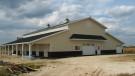 New Beautiful Horse Barn
