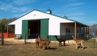 Colorado Livestock Buildings to Suit Dairy/Beef/Hog Production Needs