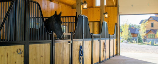 Horse Barns at Home Strike a Colorado Chord